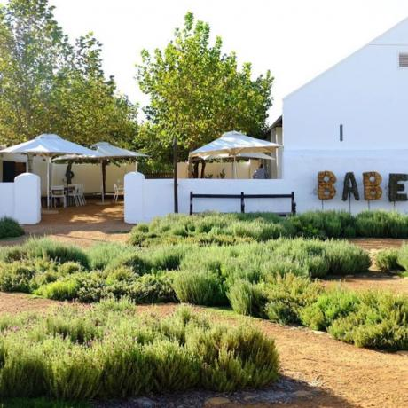 Babel at Babylonstoren